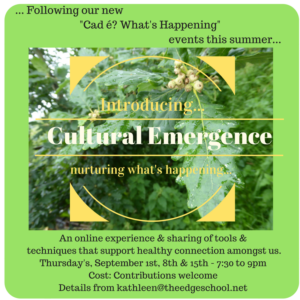 Cultural Emergence