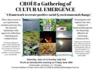 Croí 8 a Gathering of Cultural Emergence.jpeg